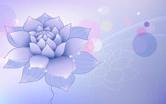 цветок, лотус, сиреневый