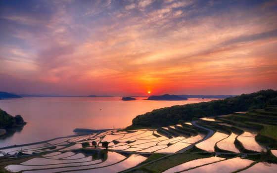 japanese, префектура, нагасаки, рис, террасы, вечер, закат, sun, страница,