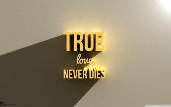 love, never, dies, true,