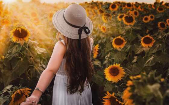 подсолнух, summer, род, утро, настроение, день, хороший, vitamin, фото, wish