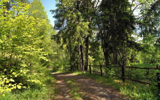 природа, дорога Фон № 32564 разрешение 1920x1200