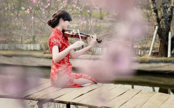 скрипка, музыкальные, инструменты, девушка,