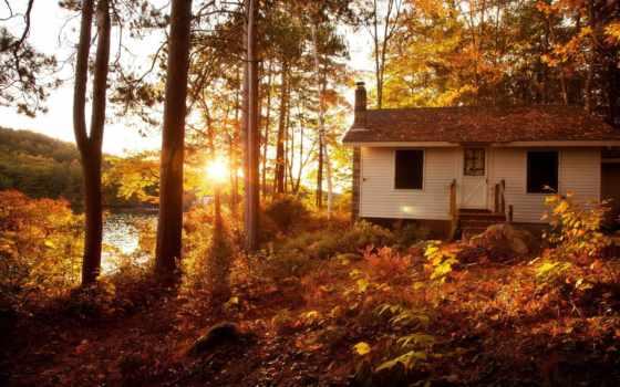 осень, природа, бани, осенью, trees, landscape, использование, бане, гостинично, сентябрь, купальный,