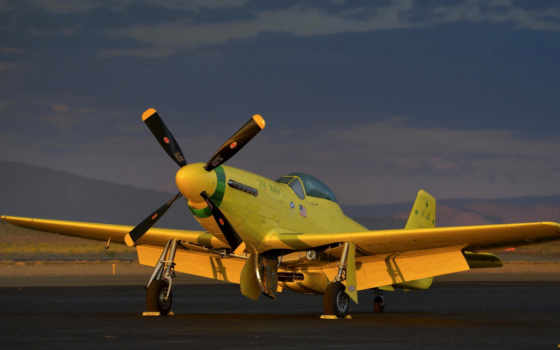 yeller, mustang, warbird, истребитель, wwii, самолёт, ole, yellow,