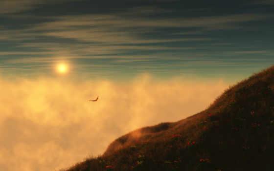 desktop, небо, птица, птиц, normal, amazing, закат, полет, minimalist,