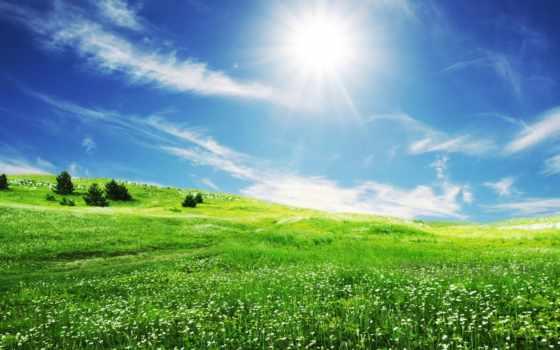 небо, sun, поле, трава, голубое, весна, природа, oblaka, зелёная,