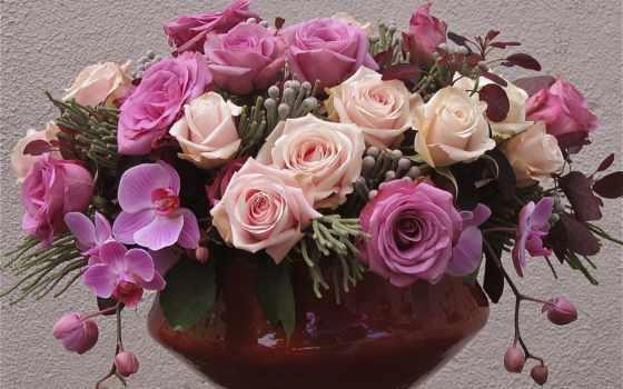 орхидеи, цветы, розы, ваза, фиолетовый,