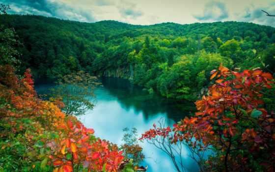 природа, озеро, лес Фон № 95885 разрешение 2048x1360