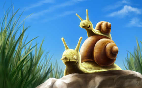 animals, snails, улитки, dad,