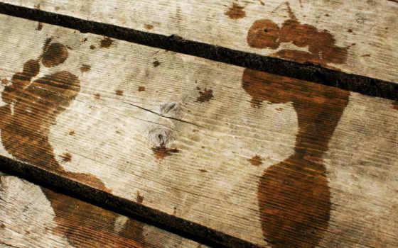 следы, wood, мост, мокрые, деревянном, nog, мостике,