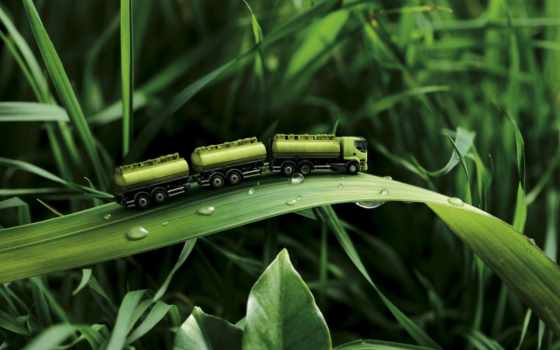 verde, fondos, parede, pantalla, юмор, para, naturaleza, caminhão,