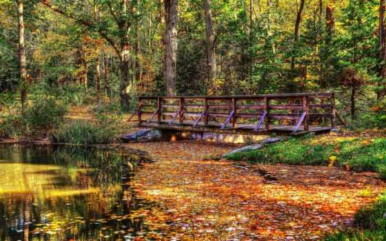 foto, id, obraz, мосты, города, осень,