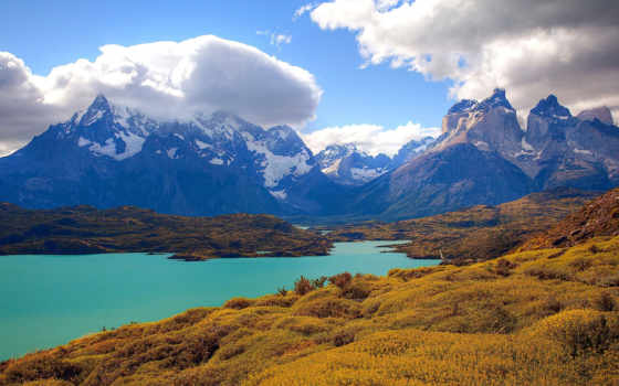 del, mirador, condor, park, chile, national, local, torres, paine, rent, друг,