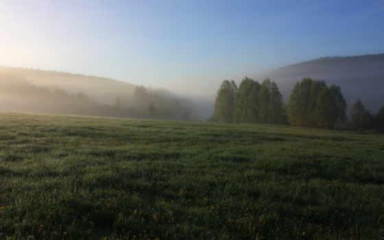 поле, природа, images