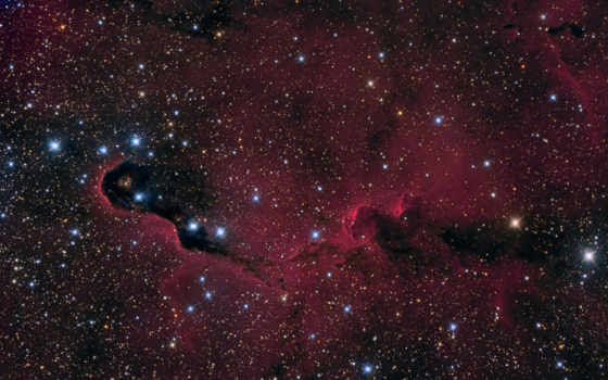 ствол, nebula, слон, космос, космосе, туманности, vivo, nebulae,