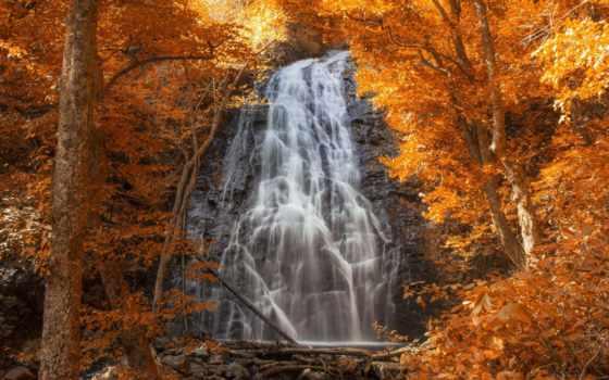 водопад, осень, лес, waterfalls, falls, природа, каскад, oregon, пасть,