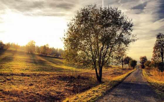 дорога, закат