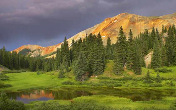 горы, деревья, природа