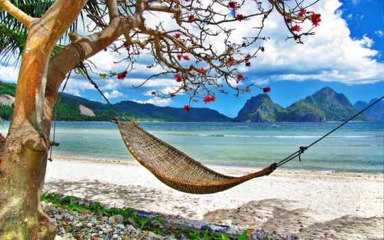гамак, море, дерево, вкус, настроения, побережье,