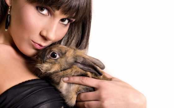 кролик, девушка