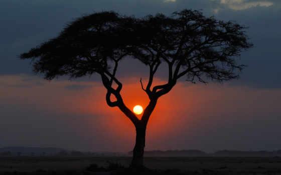 закат, landscape, африка
