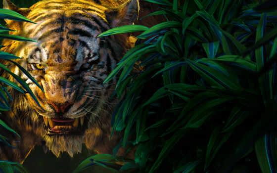 jungle, книга, khan, shere, фильмы, джунглей,