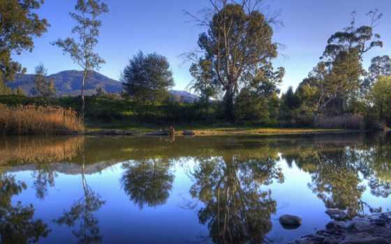 отражение, природа, widescreen, pack, страница, лес, free, мар,