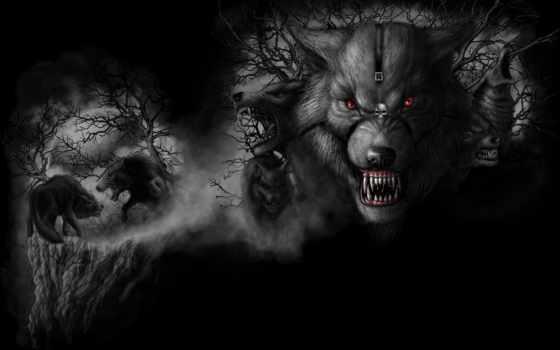 волки, ужас, звери, уже, загружено, лучшая, wpapers, совершенно, свой, коллекция,