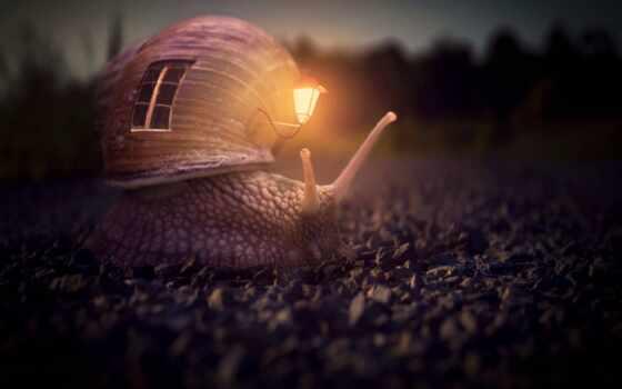 snail, fantasy, lantern, креатив, house, home, ночь, фон