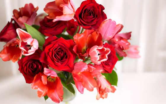 букет, тюльпанов, роз, ольги, тюльпаны,