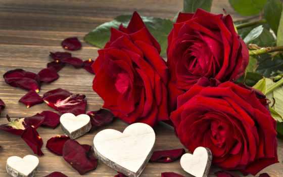 valentine, день, святого, love, сердечки, розы, рози, любовью,