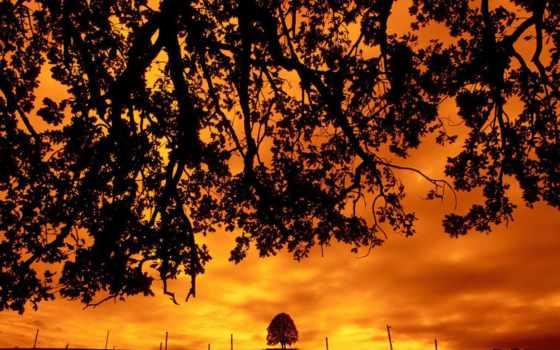 plochu, krajina, adršpach, tapety, закат, природа, obrázky,