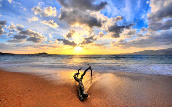 закат, water, log, природа, пляж, рассвет, снять, солнца, фотографий, дек, коряга,