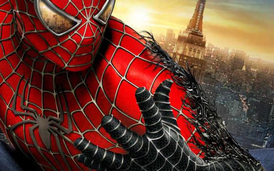 мужчина, паук, спайдермен
