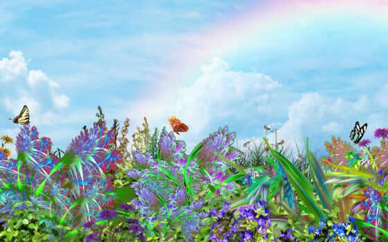 природа, бабочки