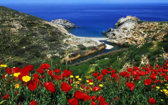 греции, greek, flora, островов, fauna, природа, ilovegreece,