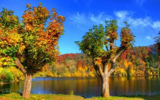 красивые, природы, природа, фотографий, качественные, графики, дизайна, rylik, страница,