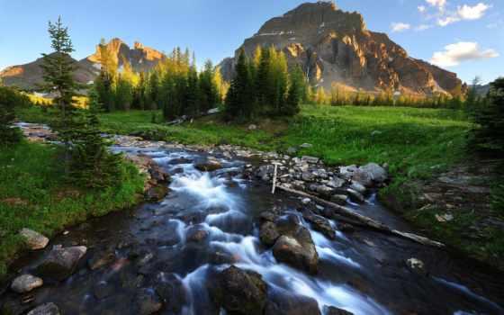 гора, ручей, scenery