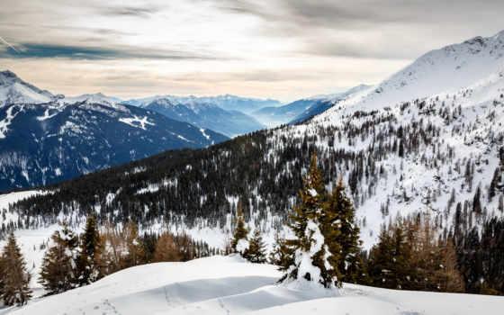 альпы, winter, free, photos, stock, images, дерево, shutterstock, vectors,