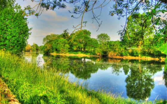 пейзажи -, разрешением, aymann, zhivotnye, que, трава, природа, desmotivaciones,