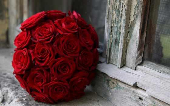 cvety, букет, роз, розы, круглый, планшета, заставки, тюльпаны, albe, ноутбука,