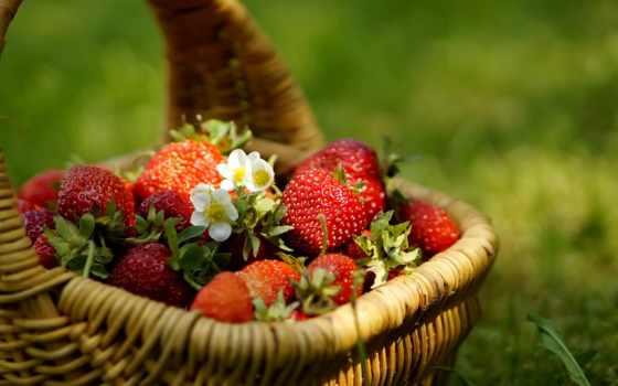 ягоды, фрукты, корзине, клубника, летние, еда, бесплатные,