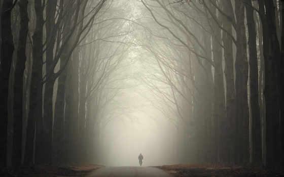 дорога, foggy, notes, more, allguyiislifemaybeneedquoteroadsadtexttimenobody, understand, показать, loading, судя,