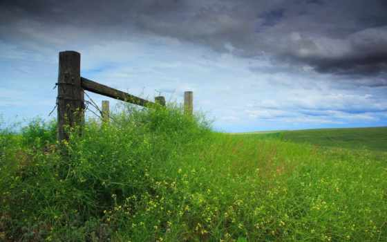 небо, трава, забор