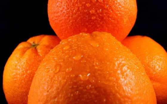wasser, orangen, tropfen, obst,