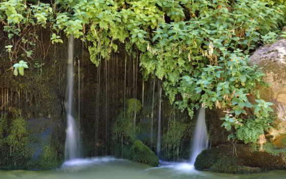 park, zion, national, utah, листва, high, lush, биг,