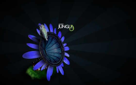 музыка, jungle