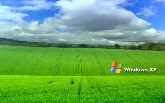 windows xp зелёное поле