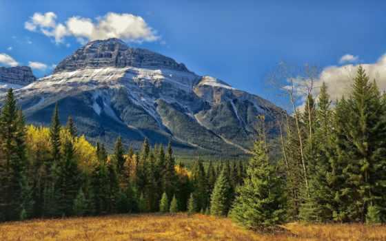 banff, скалистый, канада, mountains, park, альберта, national, бант, долина, гора,