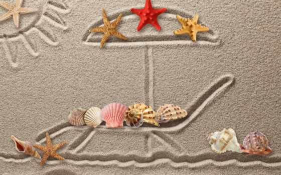 ракушки, рисунок, starfish, песок, seashells, drawing, собака, текстура, камни, кораллы,